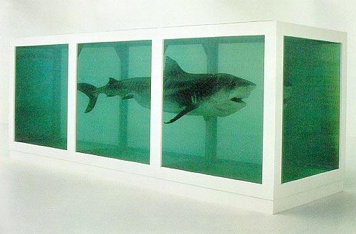 8-12 millió dollár értékű formalinban konzervált cápa, Damien Hirst műve
