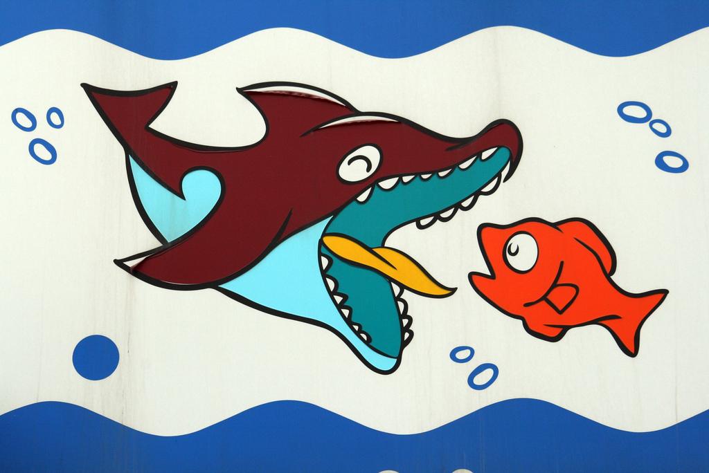 nagy hal