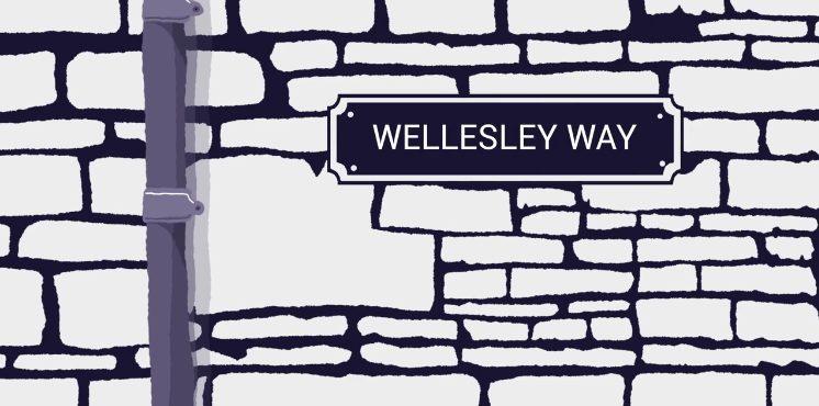 (Fotó: Wellesley / Vimeo)
